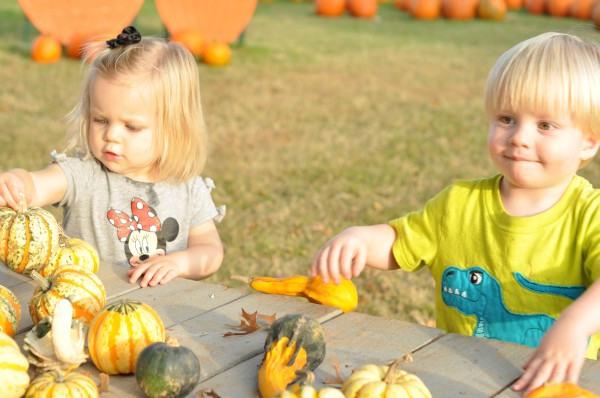 Home Spun Fun: Sticker Pumpkins